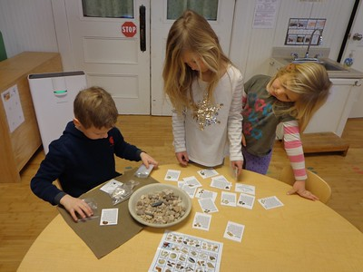 sorting fossils