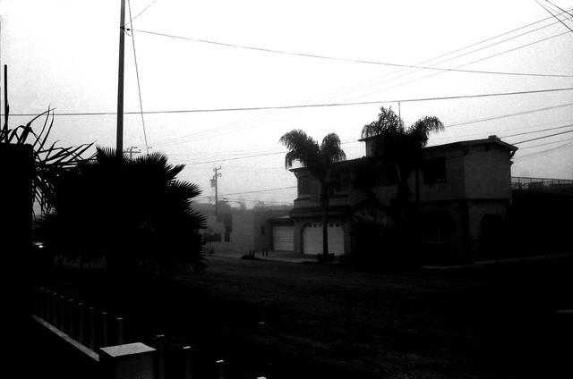 Niebla (1) (Retina IIc Febrero 2021 IMG_20210217_0001)