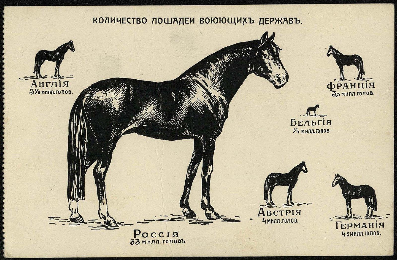 1914. Количество лошадей воюющих держав