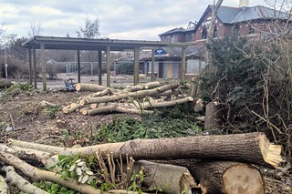 Tree felled at the old Baffitos bar on Preston Docks | by Tony Worrall