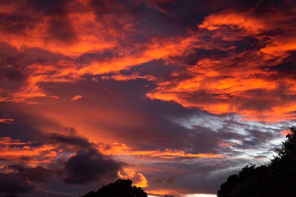Sunset over Springbrook