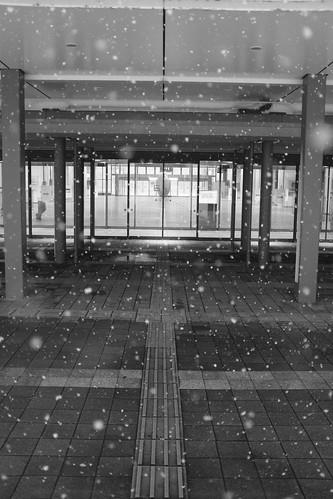 21-02-2021 at Asahikawa (5)