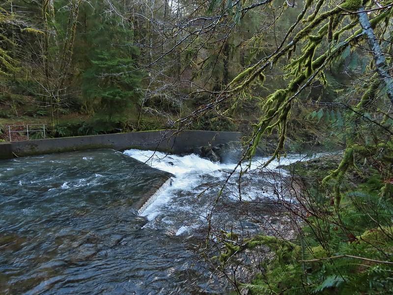 Upper North Fork Falls