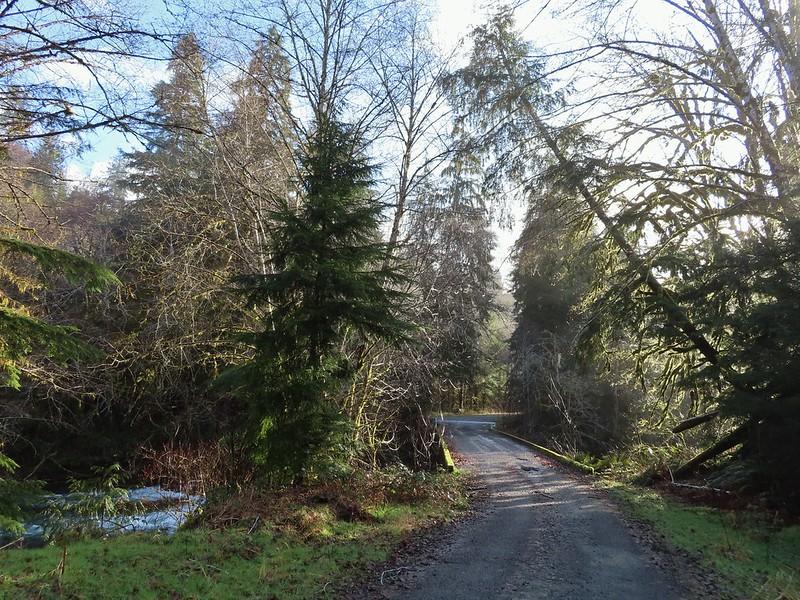 North Fork Road crossing the North Fork Nehalem River