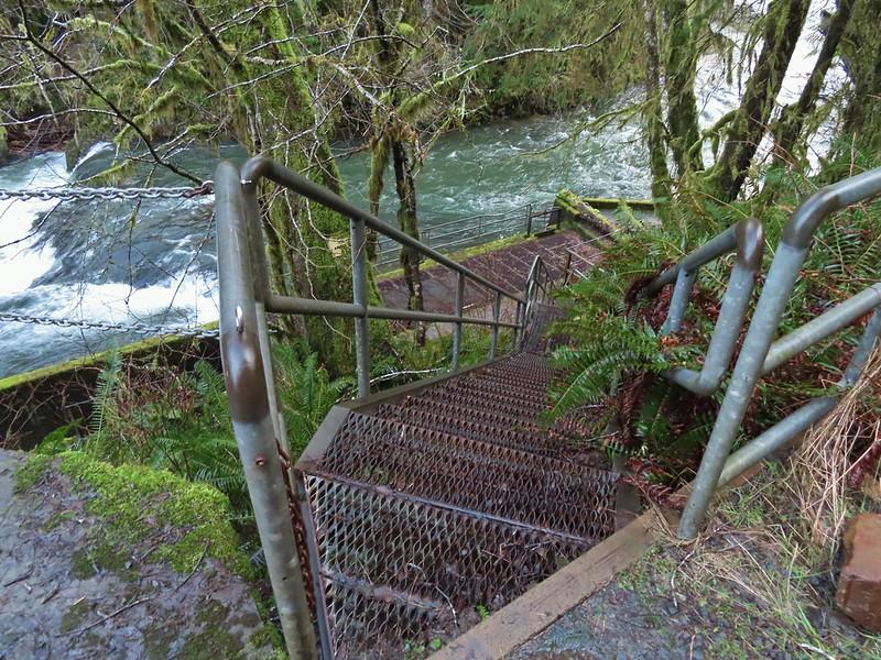 Fish ladder at North Fork Falls