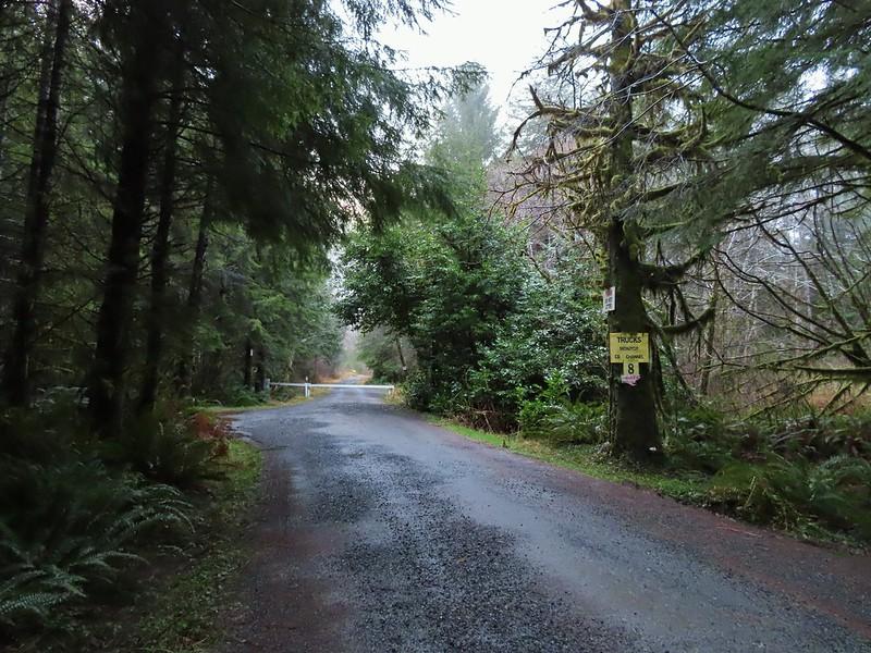 Trailhead on North Fork Road
