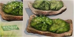 N21 - Ariskea - Mossy Plates