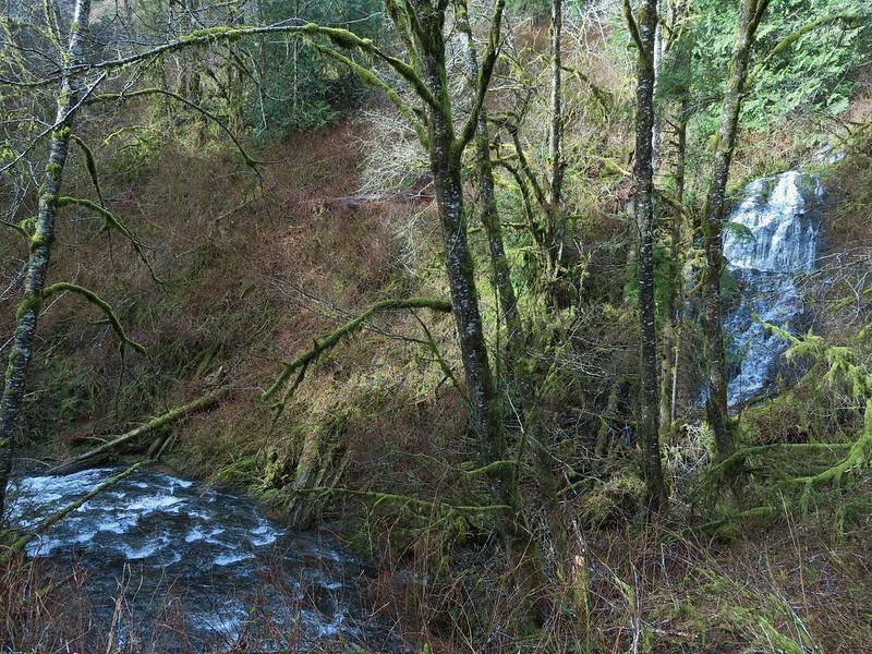 Waterfall spilling into Fall Creek