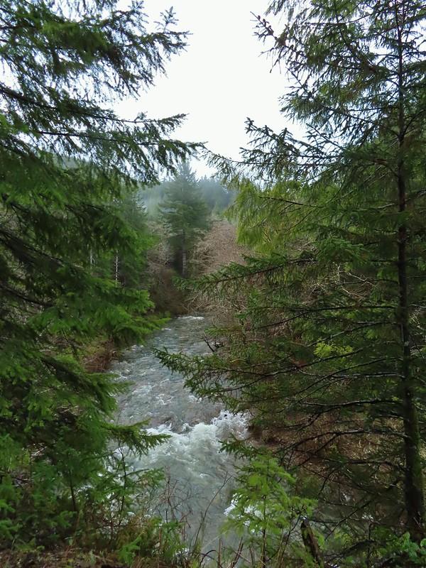 North Fork Nehalem River
