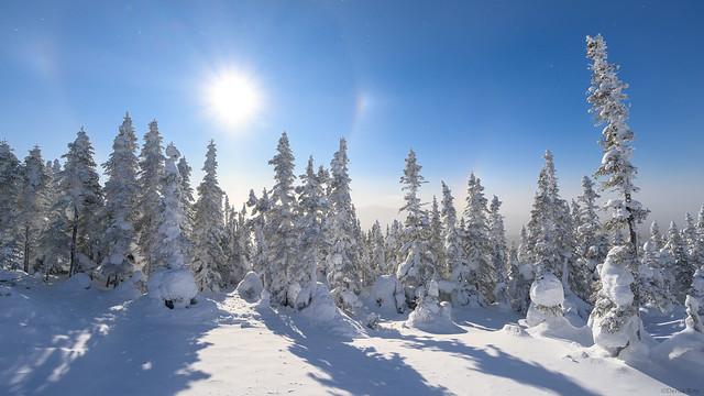 Neige ensoleilée