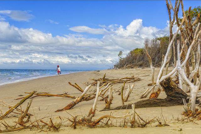beach stroll (Explore, 21/2/21)