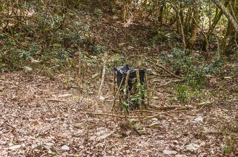 久久巢山稜線集水水袋