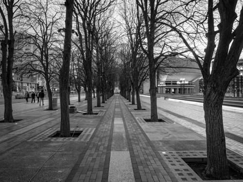 boston ma blackandwhite bw backbay christiansciencecenter baretrees winter monochrome monochromatic olympuspenf penf