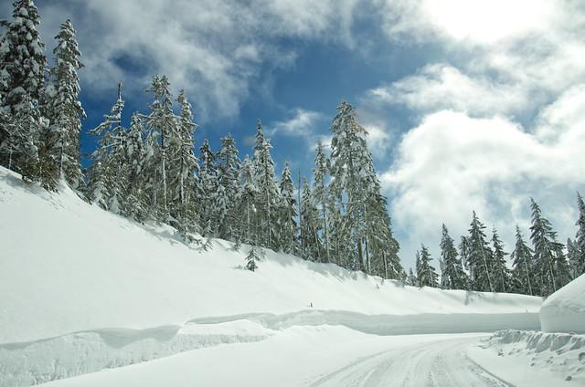 Snowy road around Mt Hood, Oregon