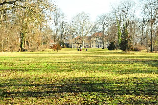 Februar 2021 ... Sonne und Frühblüher ... Schlossgarten Neckarhausen ... Brigitte Stolle