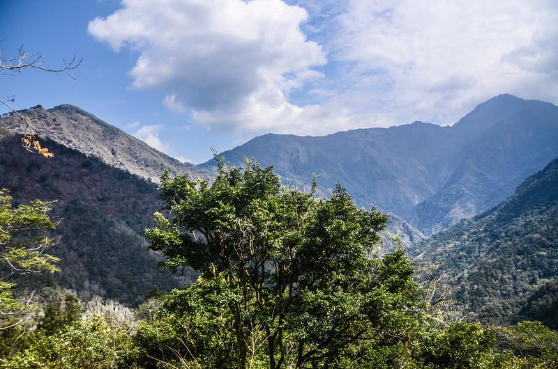 久久巢山徑(H 1020 m)東北望螺婆間山、三來稜山及三來稜山~干卓萬稜線
