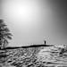 Cime de Peïra Cava - 1581m