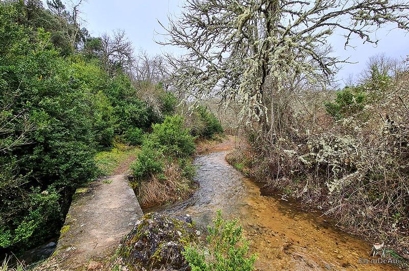 Cascada de la Huevera en Padrones de Bureba (5)