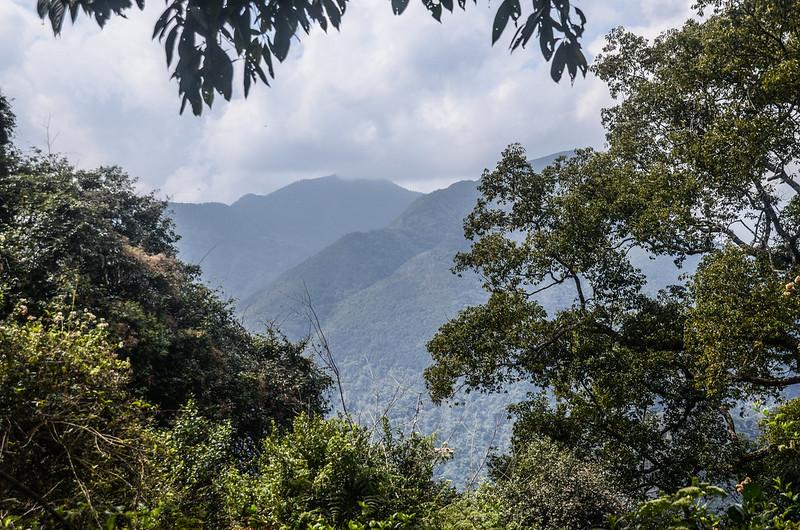 久久巢山稜線(H 1240 m)西望大尖山