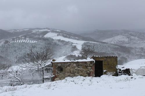 vestito di neve