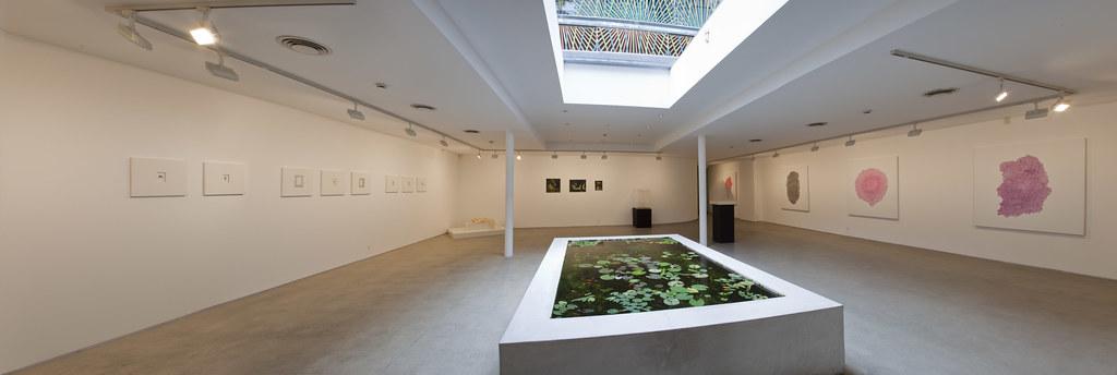 Martin Browne Gallery, Potts Point. Credit  Martin Browne Ga