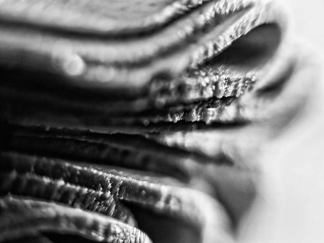 Geflügel Scheiben – abstrakt Schwarz Weiß Makro Kunst Fotografie