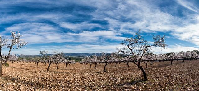 El noroeste de Murcia. Caravaca de la Cruz.