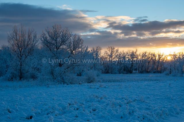 Winter Sunrise in Colorado