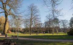 In the park. Warmest 21 februari ever