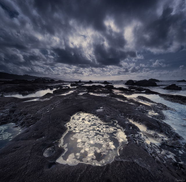 Sea Foam in Tide Pools