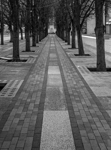 boston ma backbay christiansciencecenter baretrees path blackandwhite bnw bw monochrome monochromatic olympuspenf penf trees