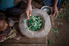 The 5 members of the household now have only cassava leaves as food. With many families turning to this last resort food source, the leaves themselves are disappearing.  ©UNICEF/Andrian. All rights reserved. Licensed to the European Union under conditions.