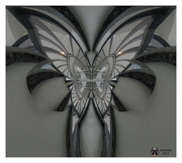 Butterfly or staircase ??