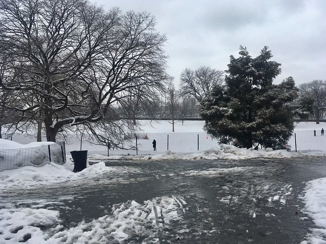 Another Snowy Day in Riverside Park