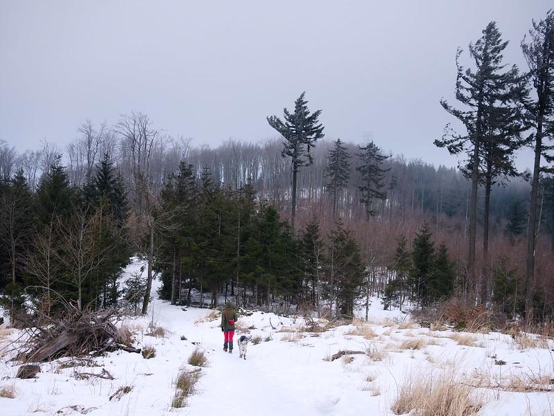 Góry Bardzkie zimą
