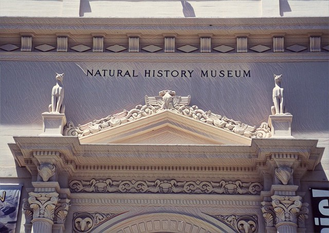 Balboa Park - San Diego -  California - United States - Natural History Museum
