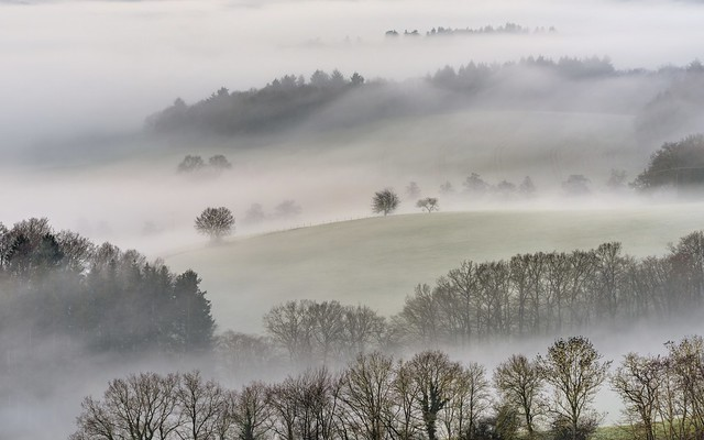 *fog and landscape in harmony*