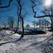Larchmont Manor Park
