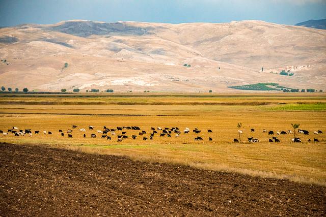 Landscape of Central Anatolia, Turkey