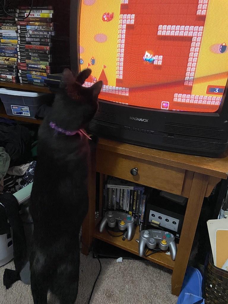 Iko playing Rainbow Islands