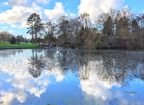 Cloud reflections on the lake at Haslam Park | by Tony Worrall