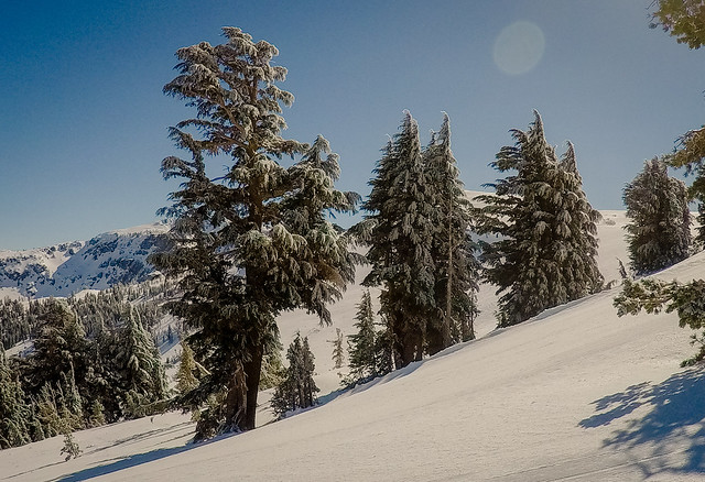 Postcard from Sierra-Tahoe