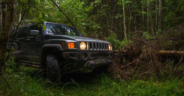 Hummer H3 on deep forest