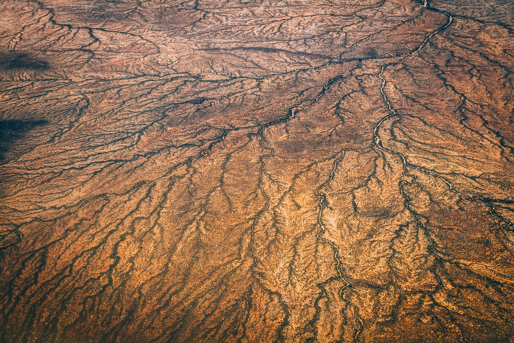 Roads on the largely brown earth look like veins.