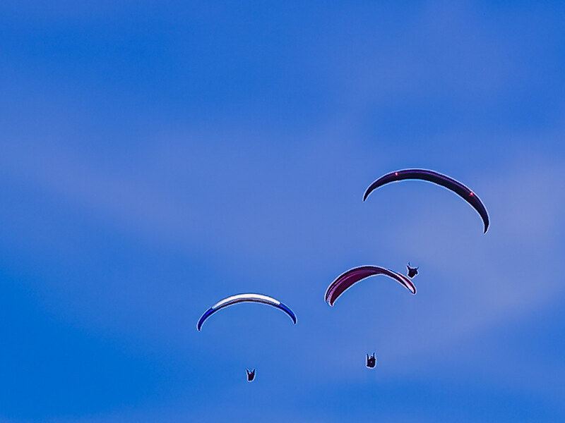PICT1433 Paragliders
