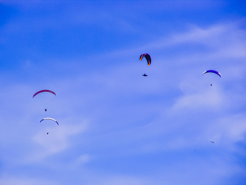 PICT1434 Paragliders
