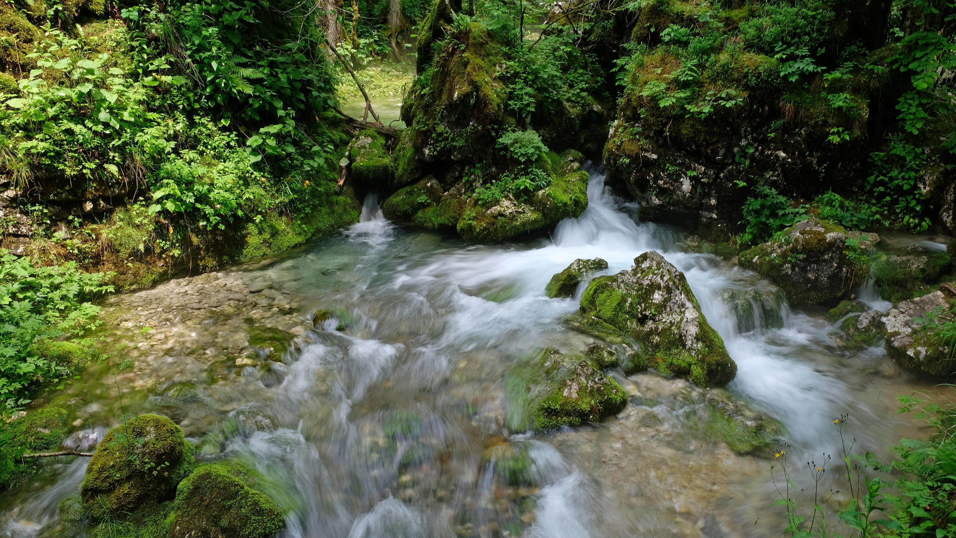 Kamniška Bistrica, Kamnik Alps, Slovenia