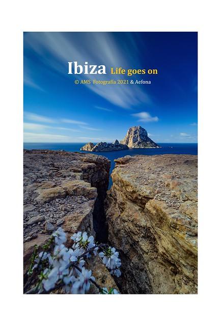Ibiza Life goes on🌼