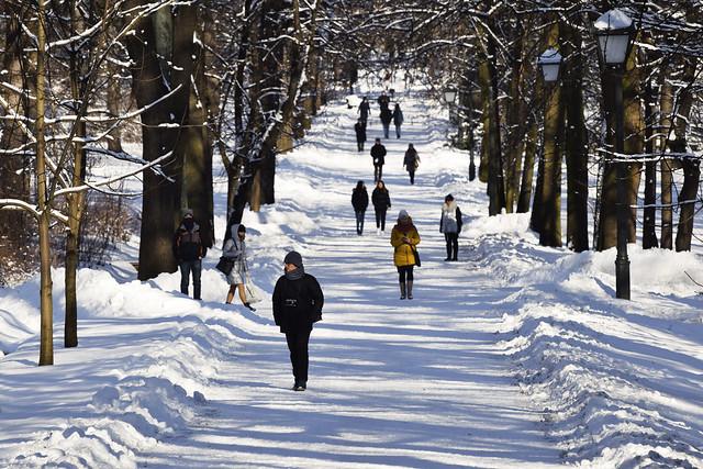 Walking in Winter Park