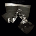 NASA / Perseverance Rover  :  Sol 2  Navcam (Left)